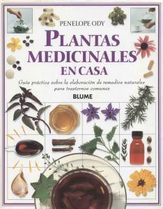 Plantas - Plantas Medicinales en Casa-000