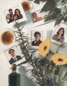 Plantas - Plantas Medicinales en Casa-007