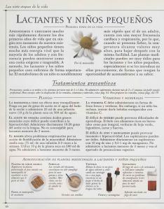 Plantas - Plantas Medicinales en Casa-009