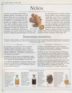 Plantas - Plantas Medicinales en Casa-011