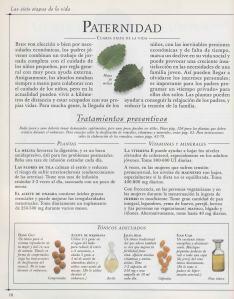 Plantas - Plantas Medicinales en Casa-017