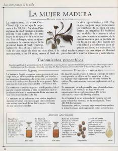 Plantas - Plantas Medicinales en Casa-021