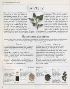 Plantas - Plantas Medicinales en Casa-025