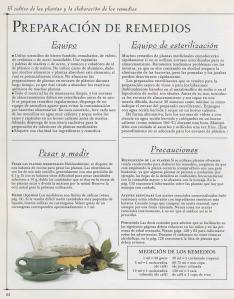 Plantas - Plantas Medicinales en Casa-061