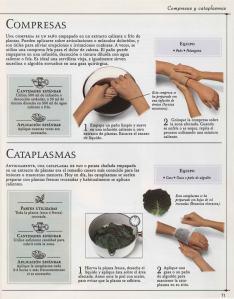 Plantas - Plantas Medicinales en Casa-070