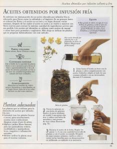 Plantas - Plantas Medicinales en Casa-072