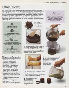 Plantas - Plantas Medicinales en Casa-074