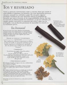 Plantas - Plantas Medicinales en Casa-083