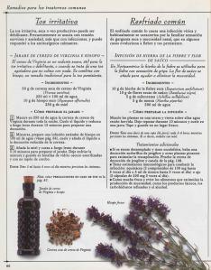 Plantas - Plantas Medicinales en Casa-085