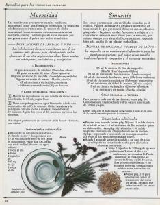 Plantas - Plantas Medicinales en Casa-089