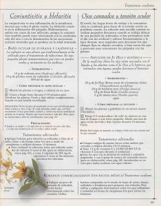 Plantas - Plantas Medicinales en Casa-092