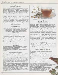 Plantas - Plantas Medicinales en Casa-103