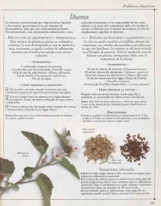 Plantas - Plantas Medicinales en Casa-104
