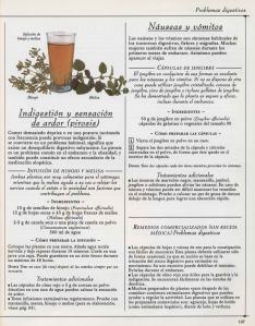 Plantas - Plantas Medicinales en Casa-106