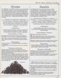 Plantas - Plantas Medicinales en Casa-110