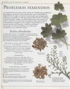 Plantas - Plantas Medicinales en Casa-119