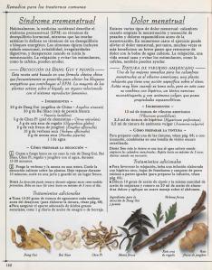 Plantas - Plantas Medicinales en Casa-121