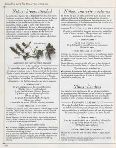 Plantas - Plantas Medicinales en Casa-129