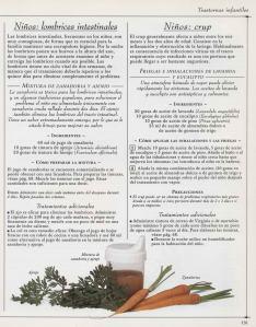 Plantas - Plantas Medicinales en Casa-130