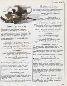 Plantas - Plantas Medicinales en Casa-132