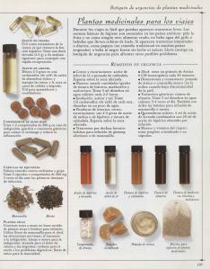 Plantas - Plantas Medicinales en Casa-136