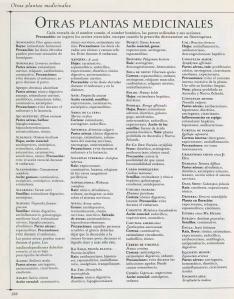 Plantas - Plantas Medicinales en Casa-137