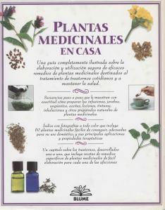 Plantas - Plantas Medicinales en Casa-144